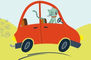 https://www.prava-sapa.hr/wp-content/uploads/2016/01/pravasapa_catmobile-1-300x200.jpg